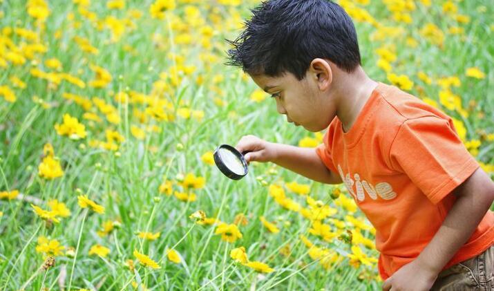 教育孩子关于环境问题的重要性