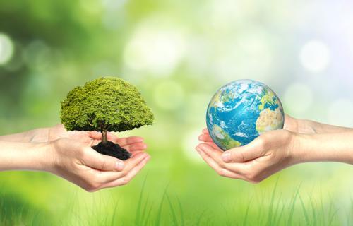 环保意识的觉醒
