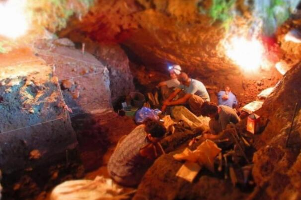 在没有骨骼遗骸的情况下恢复的人类环境基因组