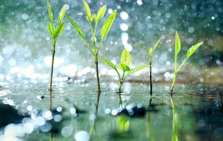 人类活动造成了四天的降雨延迟 阻碍了水文循环