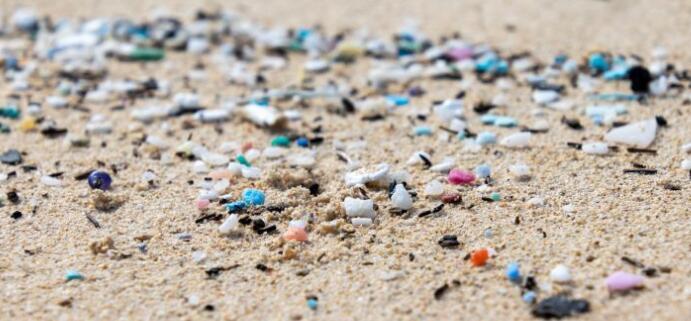 以色列征收一次性塑料税