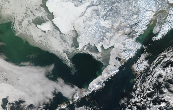 在东白令海发现的两个生物多样性保护区