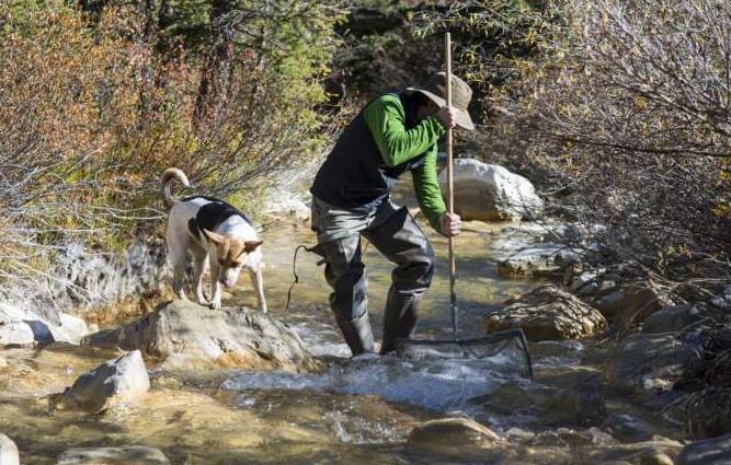 稀土元素和老矿给西方供水带来麻烦