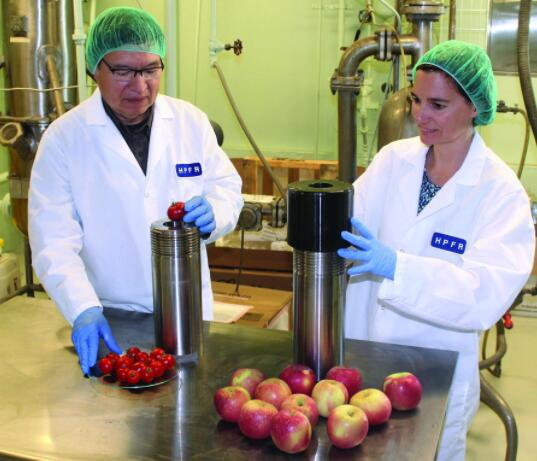 新的食品冷冻概念可提高质量且增加安全性并减少能源使用