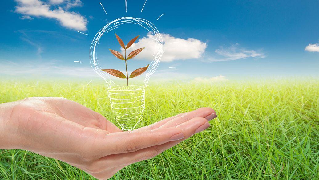 您今天可以实施的8个环保商业理念