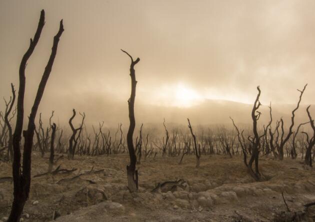 改变气候否认者思想的途径