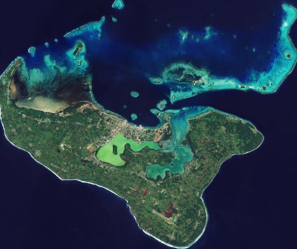 卫星是监测海洋碳的关键