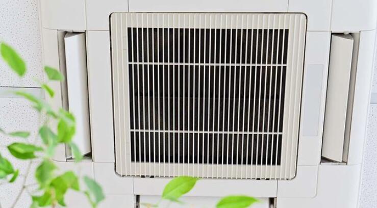 办公室空气质量可能影响员工的认知与生产力
