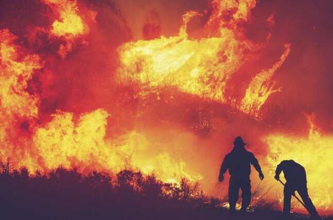 消防员接触野火烟雾化合物的情况因职责而异