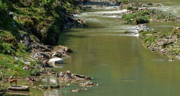 剖析第十二大马计划中的环境问题