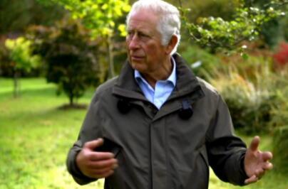 查尔斯王子告诉环保人士要保持建设性