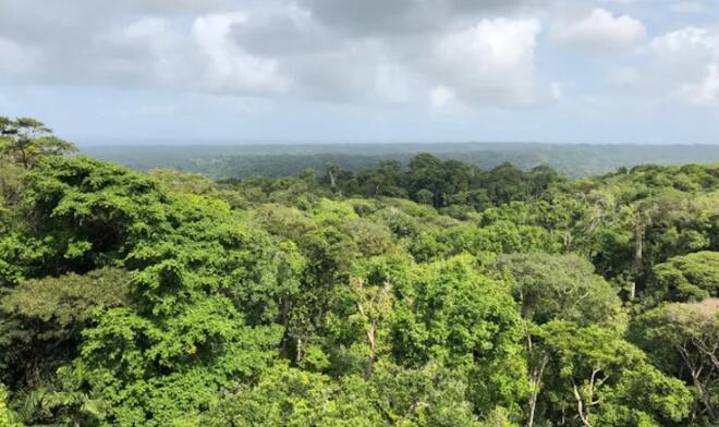 土著领土应对气候变化