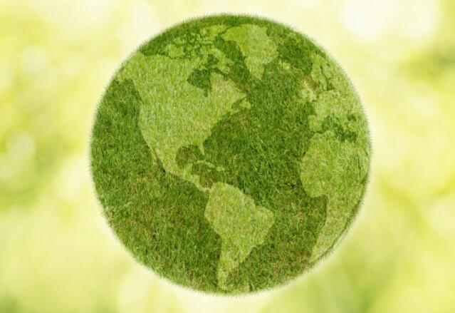 为什么英国的微型企业可以促进环境可持续性的积极变化
