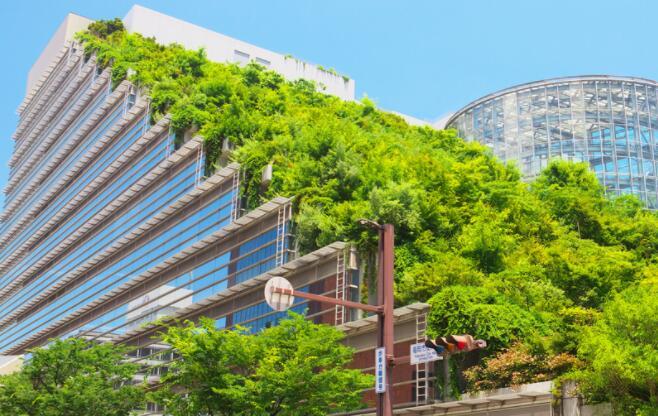 日本九州的4项生态旅游倡议