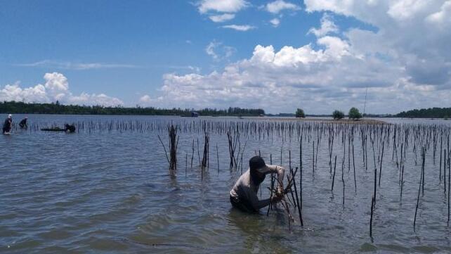 BRGM与Unmul提供环保水产养殖培训