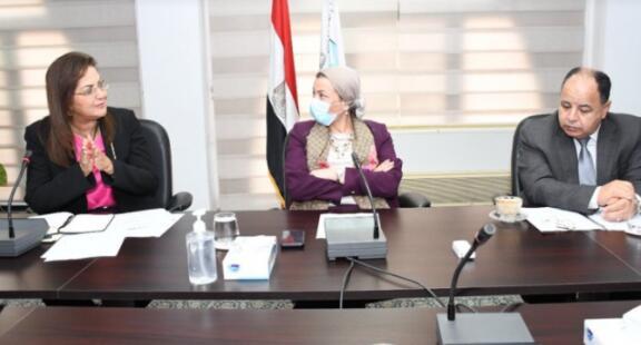 埃及政府讨论绿色复苏的转型机制